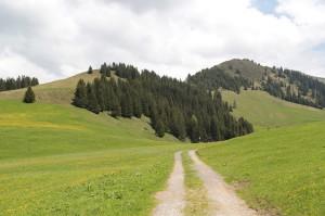 landschaft-838052_640